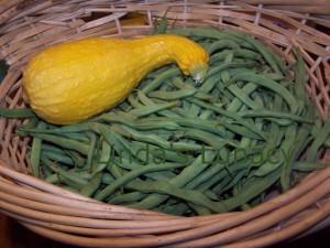 green beans yellow squash