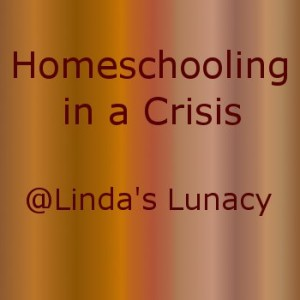 homeschooling in a crisis