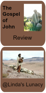 Gospel of John Review