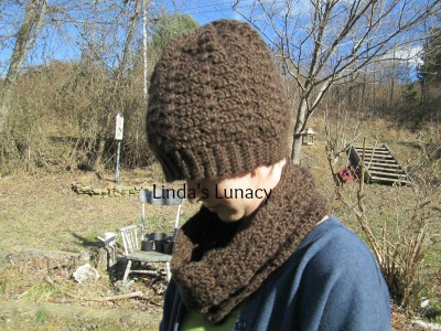 crocheted hat cowl