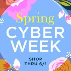 Spring Cyber Week