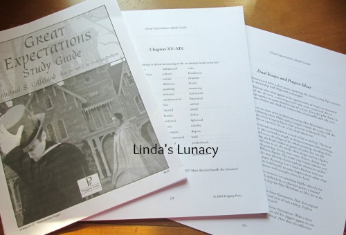 Progeny Press Great Expectations Study Guide