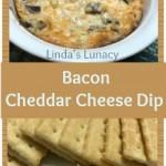 Bacon Cheddar Cheese Dip