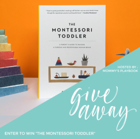 Montessori Toddler Book Giveaway