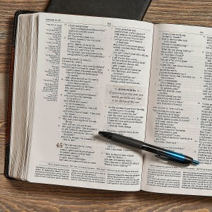 Tony Evans Study Bible Review & Giveaway